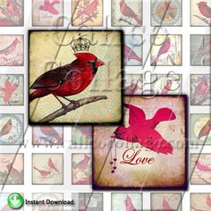 NEW Red Cardinal Birds  Instant Download Digital by calicocollage, $4.15