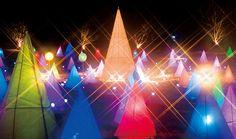 Swan Festival at Tokachigawa Hot Springs, Otofuke Town, Hokkaido 2015年 1月 24日- 2015年 3月 1日 #Japan