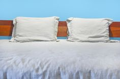 BrightNest | Four Crucial Steps for Bed Bug Prevention