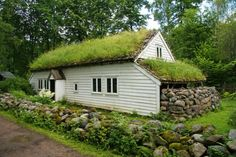 Norway house with green roof