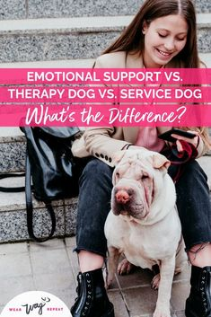 Whats the difference between emotional support dog vs therapy dog vs service dog? If you've always dreamed of doing therapy dog volunteer work then you need to read this post! Learn about the training you need to become a therapy dog, the therapy dog test and where you can take your therapy dog in this post from Wear Wag Repeat. Therapy Dog Training, Therapy Dogs, Dog Training Tips, Dog Status, Puppy Facts, Dog Test, Durable Dog Toys, Support Dog, Group Of Dogs