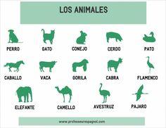 El vocabulario de los animales, nivel básico.