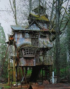 Redmond Treehouse, Redmond, Washington