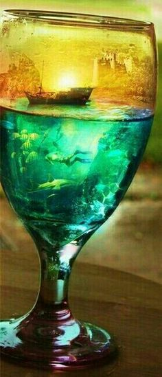 Life in a glass. . .