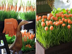 Ideias para o almoço de Páscoa - mesa com decoração inspirada em uma horta de cenouras orgânicas do Coelho - ( Móveis e objetos: D. Filipa | Decoração: Clarissa Rezende | Flores: Monica Rezende | Buffet: Duas Gastronomia | Fotos: Constance Zahn )