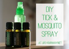 Homemade Tick and Mosquito Spray