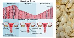 You're in a bad mood. You're bloated. You've got cramps. Ah, the joys of premenstrual syndrome, or PMS. While not every woman gets premenstrual ...