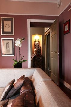 I don't much like Pantone's color of the year, but I like the two-tone wall with the accent color above the molding.