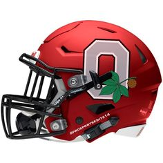 THE Ohio State Buckeyes!