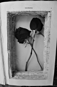 Hollowed out book made into a box w/ dried roses inside