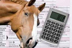 5 Tax Tips for Horse Professionals and An Opportunity to Ask Your Horse Business Tax Questions Live http://www.equestrianprofessional.com/public/5-Tax-Tips-for-Horse-Professionals-and-An-Opportunity-to-Ask-Your-Horse-Business-Tax-Questions-Live-2.cfm