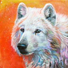 Canadian Artist and Painter Shannon Ford is a featured artist at the mountain galleries at the fairmont. Shannon's paintings are available. Canadian Artists, Animal Paintings, Ravens, Ford, Gallery, Prints, Animals, Crows, Animales