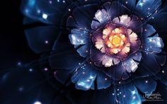 Fractal flower - http://jardineriaplantasyflores.com/fotos/fractal-flower/