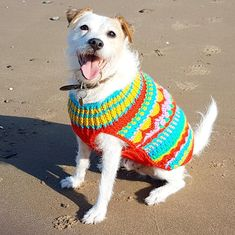 Love Christmas and all the colours? Love Christmas decorations and baubles? Love your dog? Then this is the project for you! This is awarm and cosy festive jumper made with fun Paintbox Yarn Simply Aran yarn. It comes in 3 sizes with tips on how to adjust the size for your dog.Examples of breeds:Small is suitable for cute lil breeds such as chihuahuas, small jack russells, dachsunds and puppiesMedium (as modeled by Cesar the parson russell) is suitable for westies, terriers, cocker…