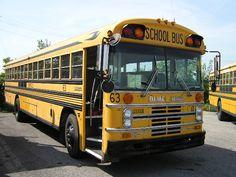 1985 Blue Bird All American. Malta Bus, School Buses, School Bus Conversion, Vintage School, Blue Bird, Old Photos, Vintage Cars, Extensions, Diesel