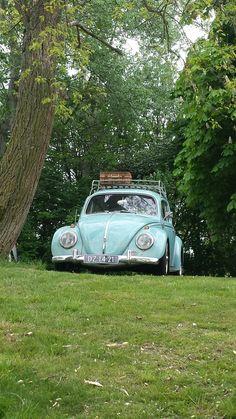 Volkswagen, Vehicles, Car, Automobile, Autos, Vehicle