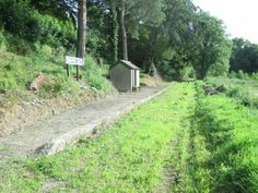 The Lynton & Barnstaple Railway - Snapper Halt in 2014 Heritage Railway, Southern Railways, South Devon, Abandoned, Places To Visit, Country Roads, Trains, Plants, Buildings
