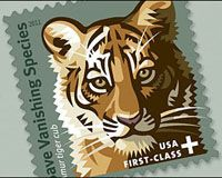 Tell Congress to Protect 3,200 Tigers  The Save Vanishing Species stamp has already raised a remarkable $1.58 million for projects that protect tigers such as cracking down on poachers and protecting parks. But if Congress  doesn't renew the stamp, this critical funding will disappear. - www.thepetitionsite.com
