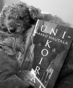 Järjellä ja tunteella: Marko Hautala: Unikoira