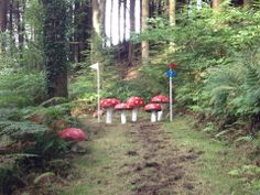 Don't think I've seen mushrooms get this treatment on a course before...staggered mushrooms