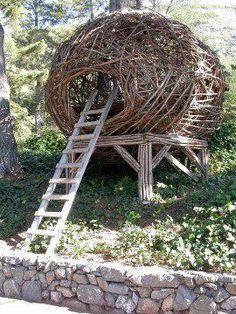 Artists such as Jayson Fann of Big Sur, Calif., and Porky Hefer of Cape Town, South Africa, design nests #buildabirdhouse