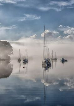 Reflection - Misty morning reflection. - Sail boats on the Huon River at Franklin in Tasmania, Australia. - by Margaret Morgan on 500px