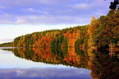 Uljaste Lake, Estonia Estonia #VISITESTONIA #COLOURFULESTONIA #VISITESTONIA Proof that Estonia is not grey!