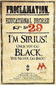 """I'm Sirius! Once you go BLACK you never go back!"" Two of my favorite things - Sirius F-ing Black and that quote. Yes sir. $9"