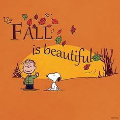 Fall is beautiful.