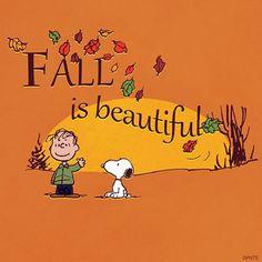 Fall is beautiful.