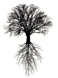 Super tree of life drawing roots tattoo ideas 27 ideas Tree Tattoo Meaning, Tree Roots Tattoo, Tattoos With Meaning, Tree Tattoo Men, Roots Drawing, Branch Drawing, Life Drawing, Nature Tattoos, Body Art Tattoos