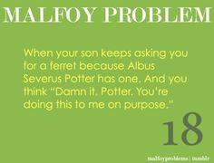 Only a true Potter fan gets this. Ha ha