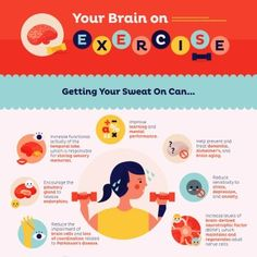 """An infographic showing the ways exercise affects your brain with the words """"The Brain Benefits of Exercise"""" Healthy Brain, Healthy Aging, Brain Health, Healthy Life, Healthy Habits, Exercise And Mental Health, Benefits Of Exercise, Health Benefits, Bone Diseases"""
