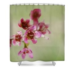 Delicate Flowers Shower Curtain by Inspired Arts