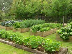 Grow Your Own: Raised Garden Beds Hillside Garden, Potager Garden, Edible Garden, Vegetable Garden, Garden Landscaping, Huerta En Casa Ideas, Raised Herb Garden, Backyard, Patio