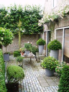 Gärten in Holland - Seite 4 - Foto-Treff - Mein schöner Garten online