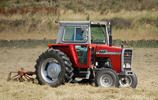 Massey Ferguson MF-500 Series Tractor SERVICE REPAIR MANUAL - Massey Ferguson MF-500 Series Tractor Maintenance and Troubleshooting Manual    COMPLETE FACTORY Massey Ferguson MF-500 MF500 Series Tractor Shop Maintenance Manual     Covers Massey Ferguson MF-500 Series Tractor in - http://getservicerepairmanual.com/p/?pid=175830526