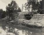 Believed to be Delaware creek, near present day Rohr Rd with Wildwood Blvd bridge in background.