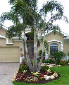 Affordable Landscaping Ideas For Your Front Yard That Will Inspire You. Normally, the front yard is regarded as the public region of the residence. The front yard of your home states a great deal about you. Possessing a dr. Palm Trees Garden, Palm Trees Landscaping, Small Front Yard Landscaping, Cheap Landscaping Ideas, Florida Landscaping, Front Yard Design, Tropical Landscaping, Outdoor Landscaping, Tropical Garden
