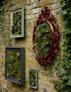 Bring colour to even the smallest garden by creating living wall frames. They're a great way of brightening up a dull wall – and affordable, too! garden ideas cheap How to make a wall garden with succulent plants in picture frames Garden Wall Art, Garden Wall Designs, Vertical Garden Wall, Garden Mural, Garden Frame, Walled Garden, Planting Succulents, Succulent Plants, Succulent Frame