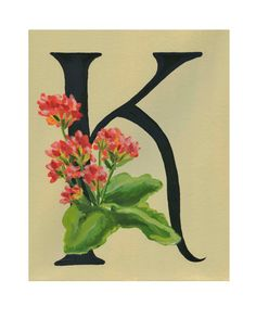 Floral Alphabet, 5x7 print, K is for Kalanchoe