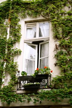 ✕ The soft rose breeze may trickle in… and we know… this is Paris / #paris #exterior