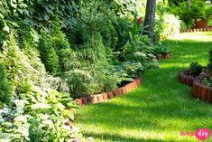 19 roślin, które będą rosły w zacienionych miejscach! - Twoje DIY Bonsai, Stepping Stones, Diy And Crafts, Pergola, Outdoor Decor, Flowers, Plants, Gardening, Stair Risers