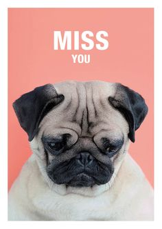 MISS YOU -  PUG GREETING CARD - AVAILABLE AT: ETSY.COM/SHOP/MEETTHEPUGS