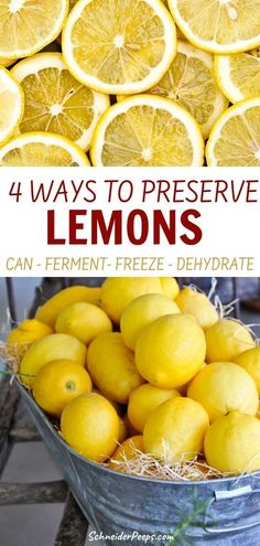 Lemons and other citrus can be preserved in a variety of ways. By canning, fermenting, freezing, and dehydrating all the lemon can be used. Learn how to put up lemon slices, preserved lemons, lemon curd, dried lemons, and much more in the guide to preserving lemons.