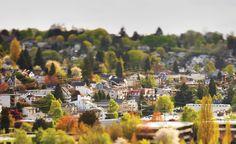 ballard neighborhood | An insider's guide to Seattle's top neighborhoods.