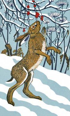 'Byrony Hare' by Robert Gillmor (linocut) Art And Illustration, Illustrations, Linocut Prints, Art Prints, Image Halloween, Lapin Art, Rabbit Art, Bunny Art, Folk Art
