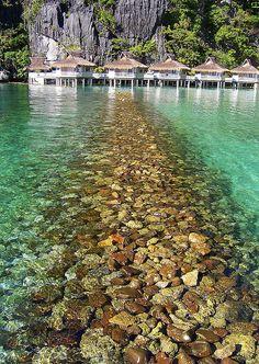 Miniloc Island, El Nido Palawan - Philippines.