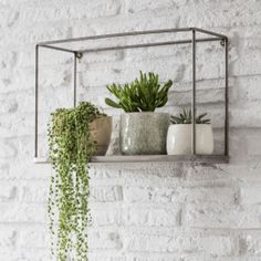 Helping to create a beautiful botanical display, the Farringdon Box Shelf looks striking with trailing plants hanging over the edge. The contemporary open design has a sheet metal base with a lip to stop pots and accessories slipping off. Box Shelves, Plant Shelves, Display Shelves, Wall Shelves, Kitchen Shelves, Kitchen Display, Bathroom Shelves, Shelving Units, Storage Units