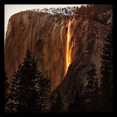 If I can take off work sometime during the 2 weeks that this happens in Yosemite I am going!